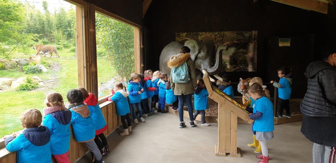 Visite du zoo pour les maternelles